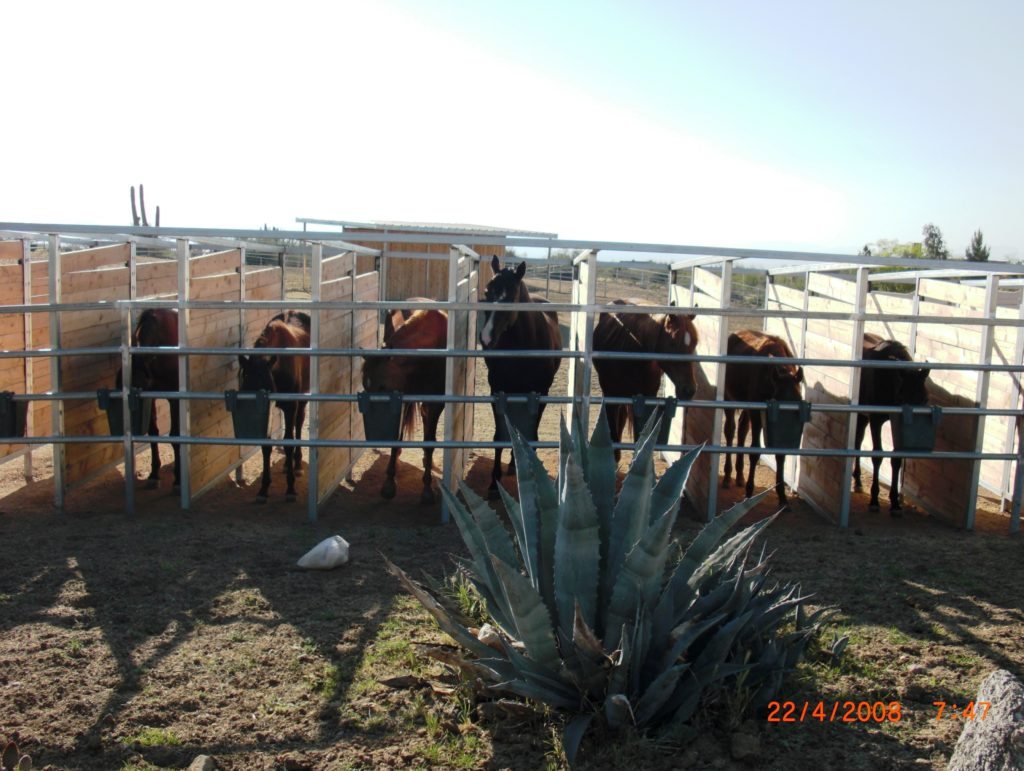 Ranch Feeding-Stand_1